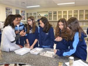 atividade-ciencias